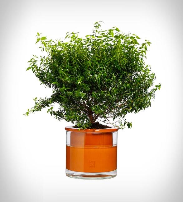 self-watering-pots-5.jpg