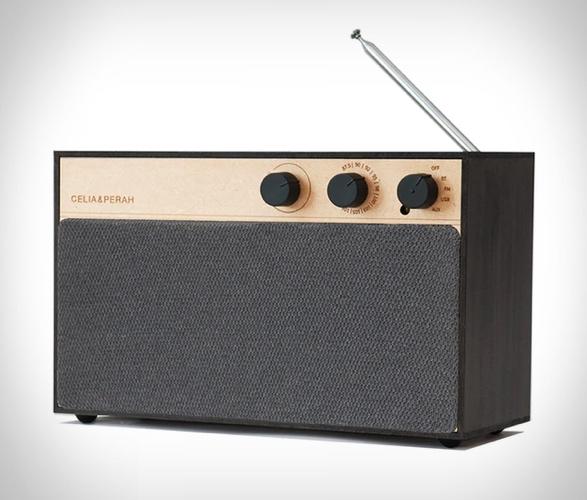 r3-diy-bluetooth-speaker-2.jpg